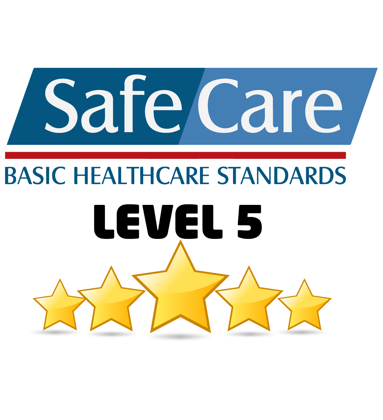 Basic Healthcare Standards Level 5